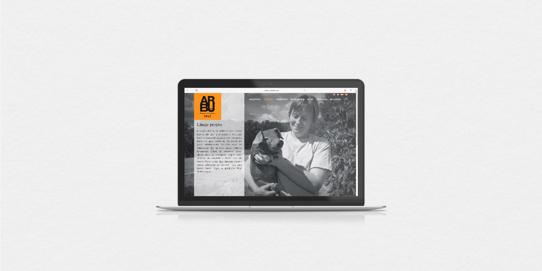 desenvolupament botiga online